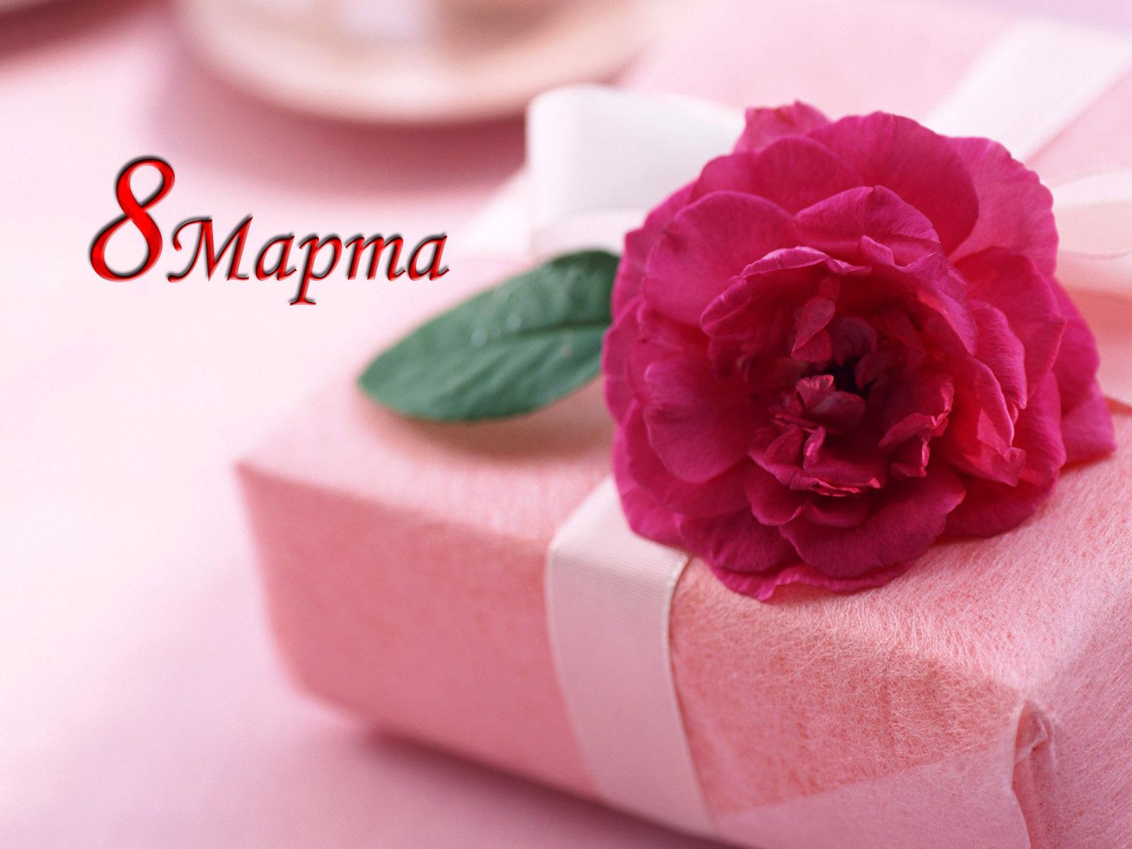 Подарок сестре на 8 марта видео живые цветы на дом