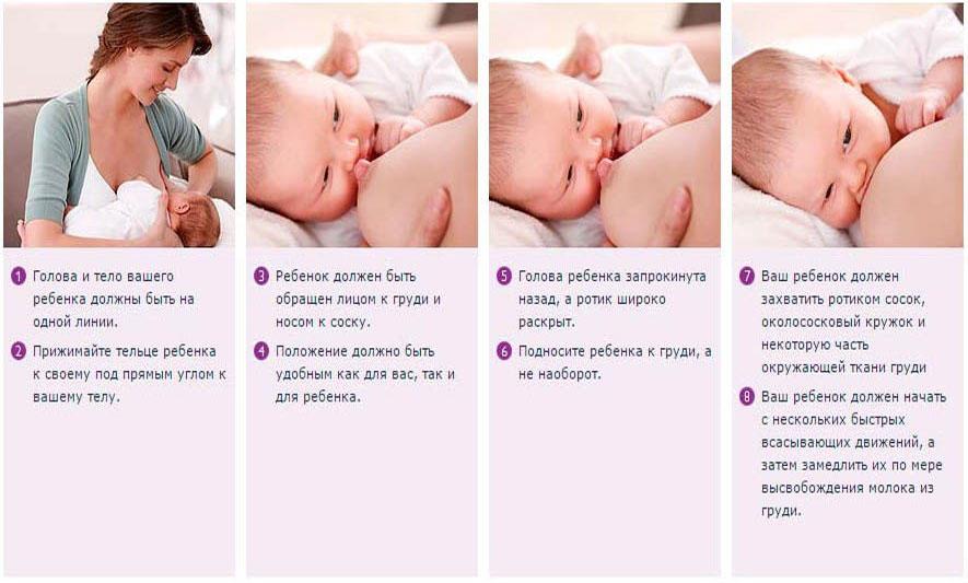 от: давать ли ребенку сцеженное молоко при отлучении этом разделе сможете