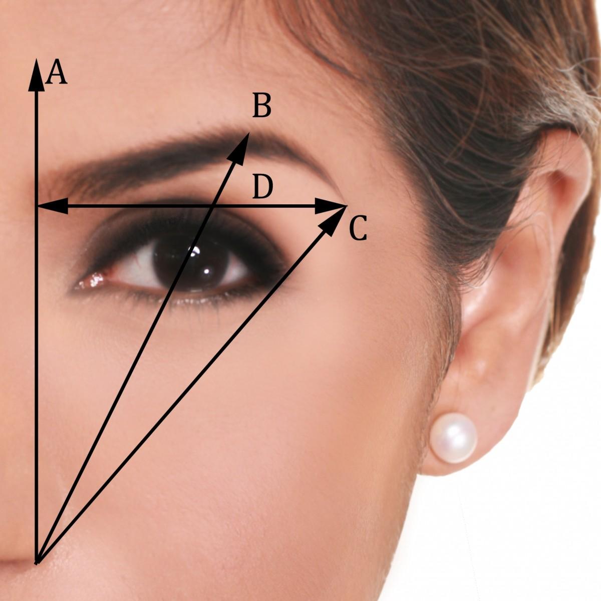 eyebrows-on-fleek-1200x1200