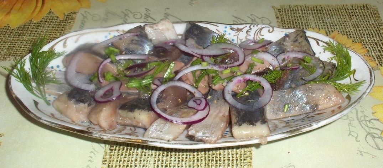 Рецепты солить сельдь в домашних условиях 33