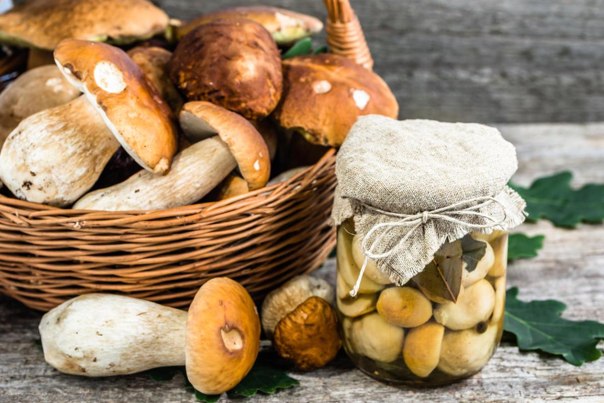 Как солить грибы свинушки на зиму в банках простой рецепт — photo 3