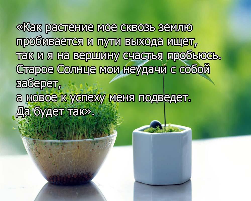 tmb_32844_7837